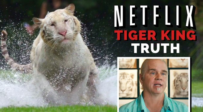 Tiger King: Lesson in Creative Video Editing